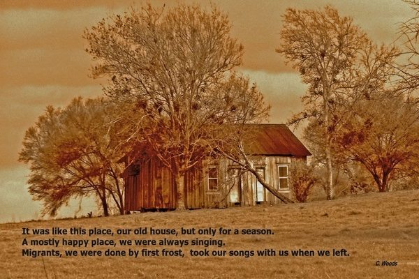 picture of a cabin surrounded by trees with a poem overlay