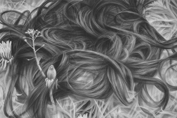 Melissa Cooke, Dandelion Hair, graphite on paper, 50