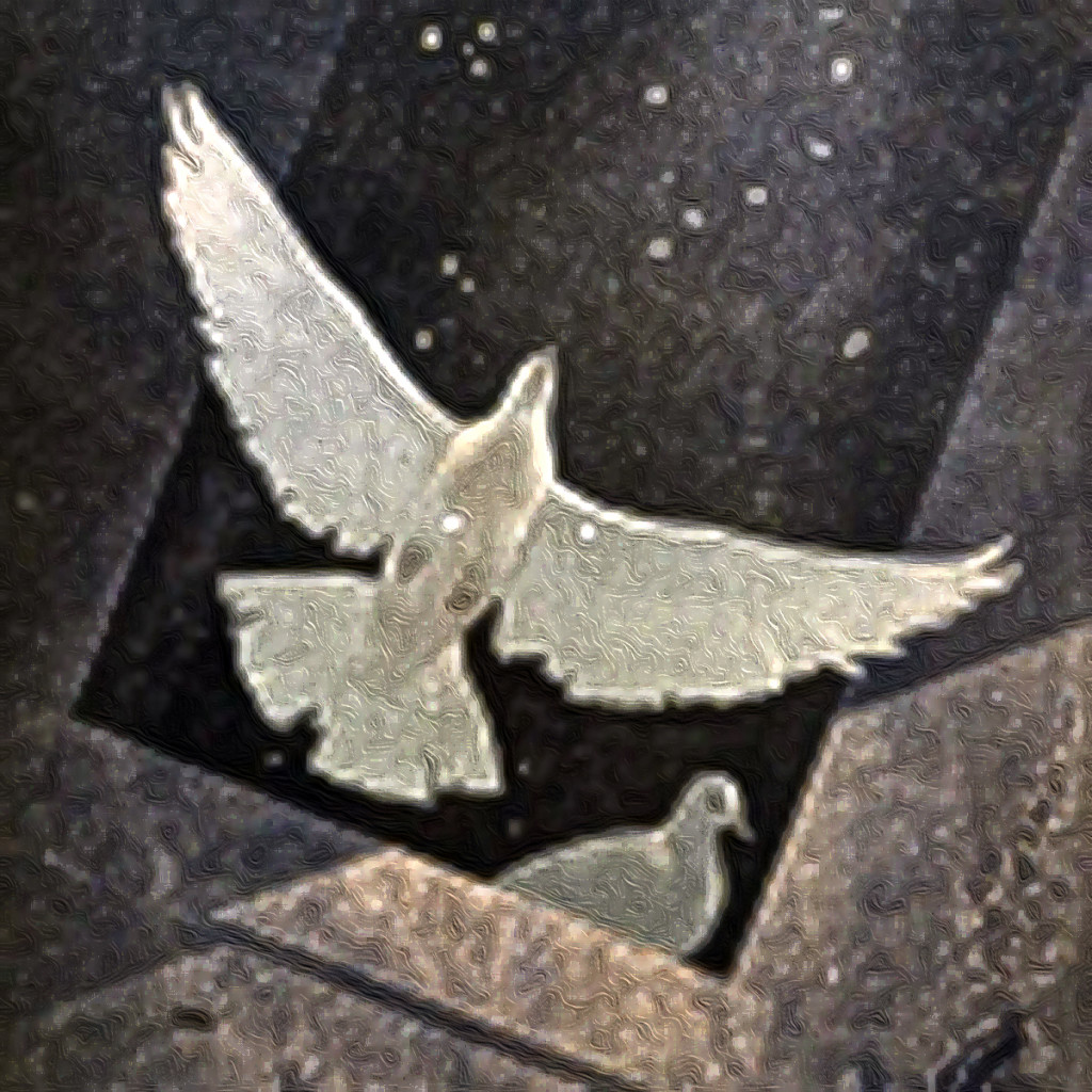 Image of a dove flying, another watching, to accompany Hybrid Writing and video features essay-poem The Falling Sickness by Charles Bane, Jr., in The Woven Tale Press