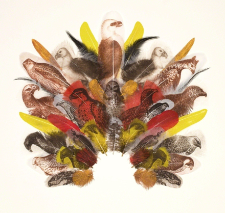 A collage of feathers with birds painted on them