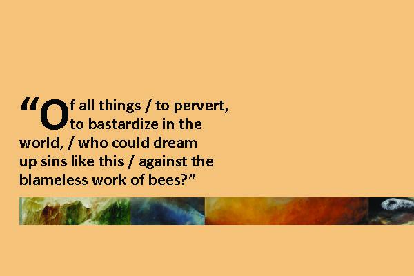 Excerpt from the poet