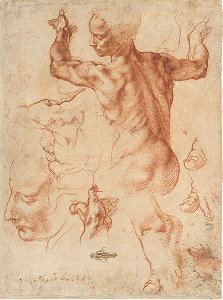 A drawing of a nude male figure by Michelangelo