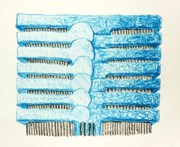 A drawing of flattened, blue sections of a ribcage