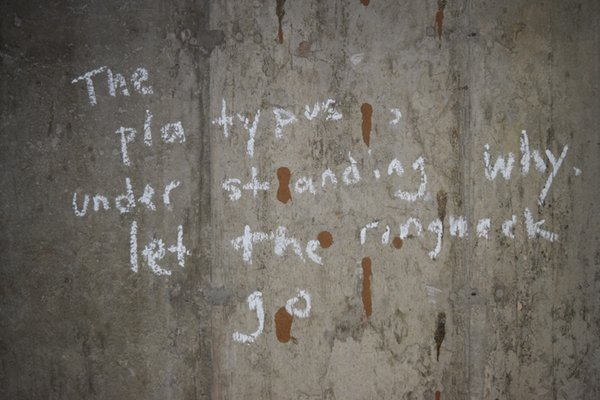 A poem written in chalk on a concrete basement wall