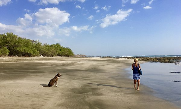 Photographer Nancy Breakstone walks along the shoreline at the beach with her dog