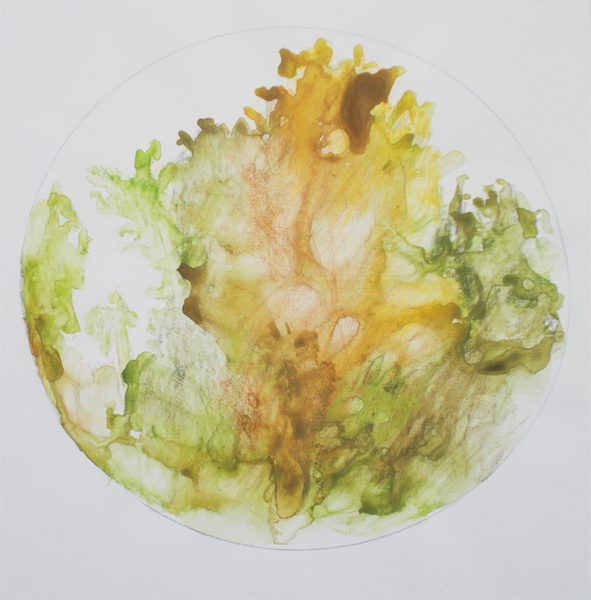 A circular abstract watercolor painting of trees