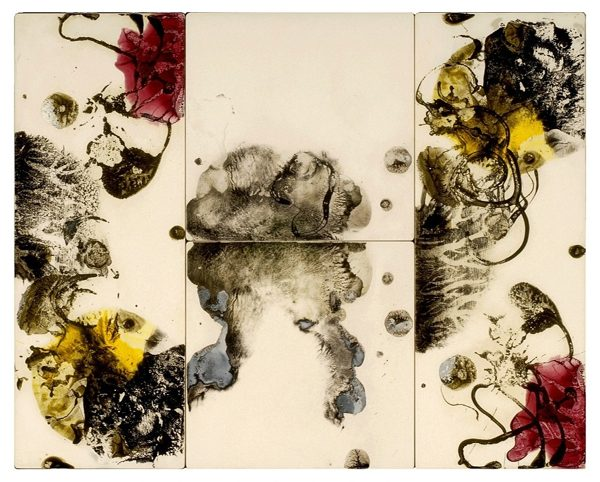 An ink print resembling floral structures in black, white, maroon, and yellow