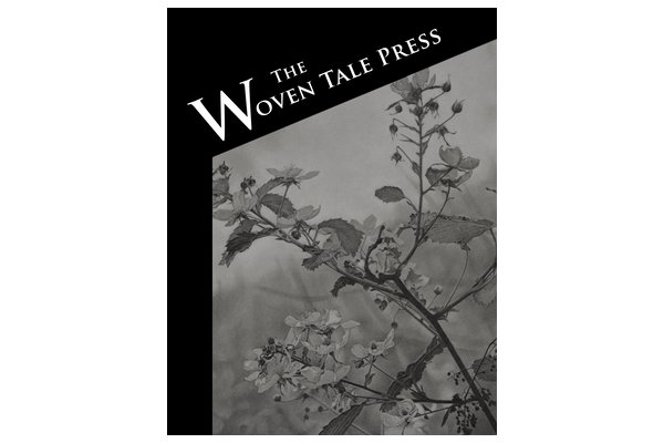 WTP Vol. VI #5