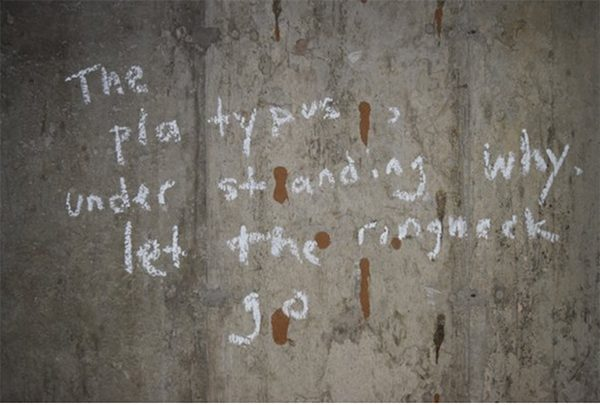 a poem written in chalk on a concrete wall