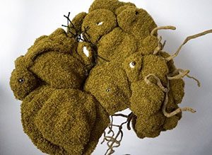 Moss sculpture by Jodi Colella