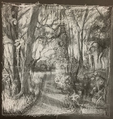 A black-and-white drawing of natural scenery by Jean Sbarra Jones