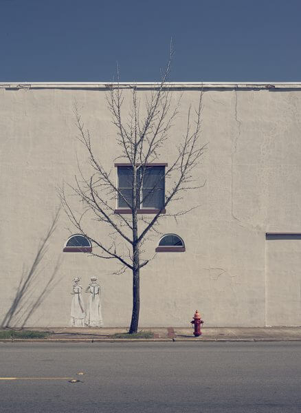 A photograph of a dead tree, with a drawing of two women in white dresses on the wall behind it
