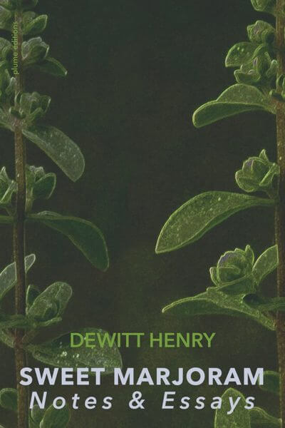 Cover of a book with a dark green background and plants on either side
