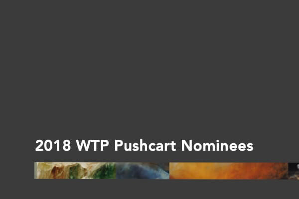 2018 Pushcart Nominations