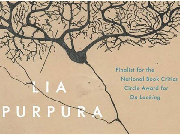 All the Fierce Tethers by Lia Purpura book cover