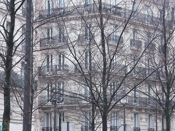 A photograph of a building in Paris with dead trees in the foreground