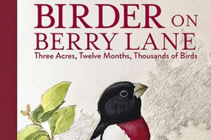 BIRDER ON BERRY LANE by Robert Tougias