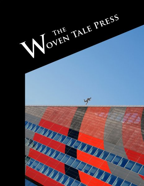 Vol. VIII #4 cover with image of structural photography