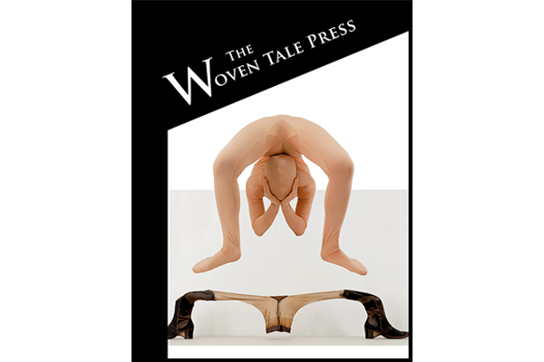 Cover of Woven Tale Press Vol. VIII #9