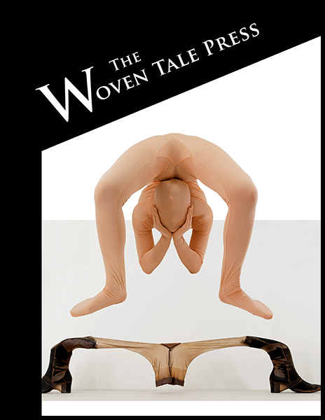 cover of WTP Vol.VIII #9