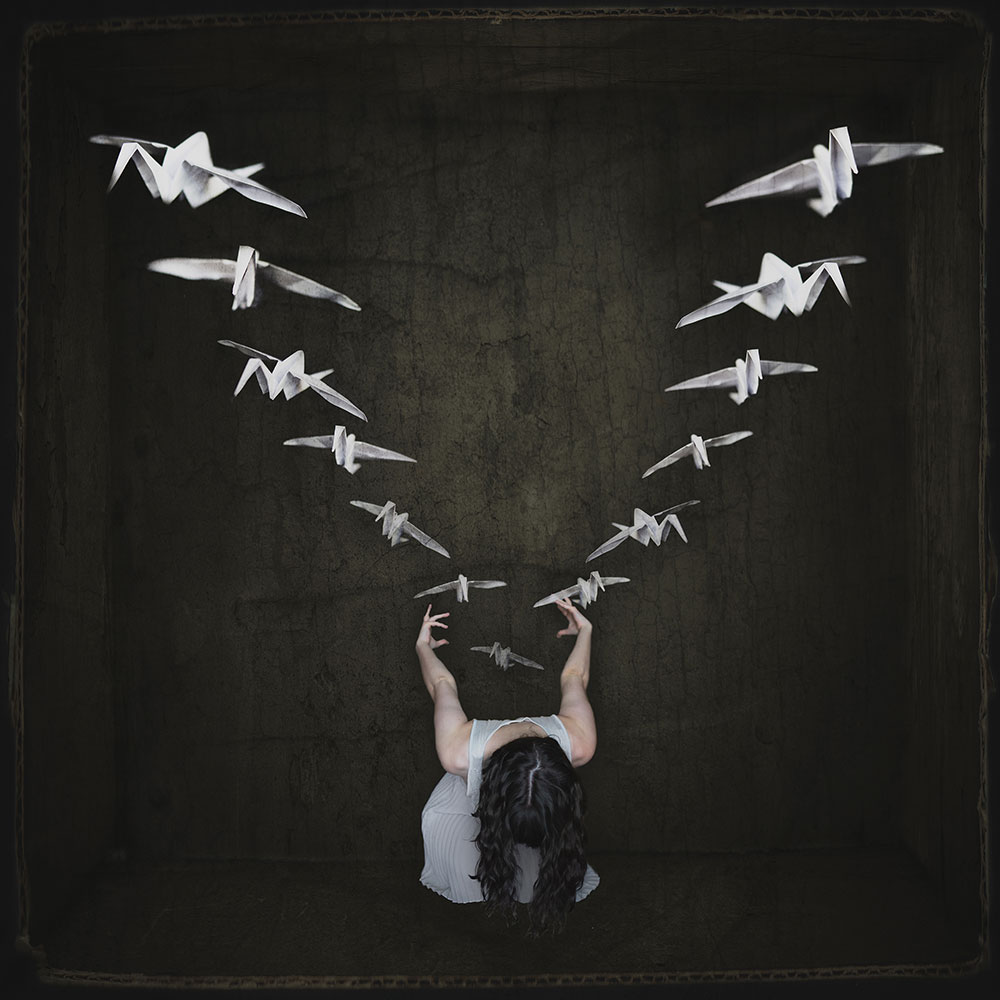 Doves, digital photography by Michaela Salvo