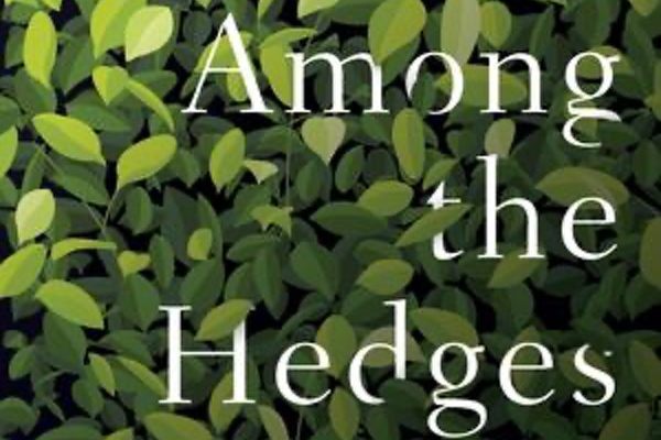 Cover of Among the Hedges by Sara Mesa