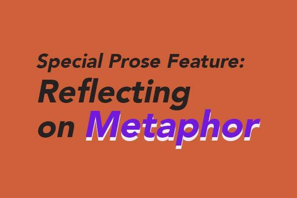 Reflecting on Metaphor